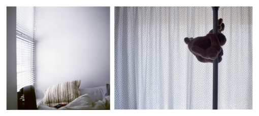 "Kathryn Combs ""Two Homes"" 10"" x 20"" Digital Fine Art Print"